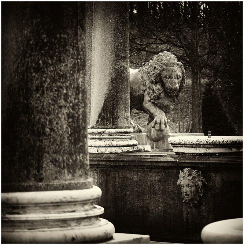 петергоф, львиный, каскад, фонтан, бродский Из пасти льва струя не журчит...photo preview