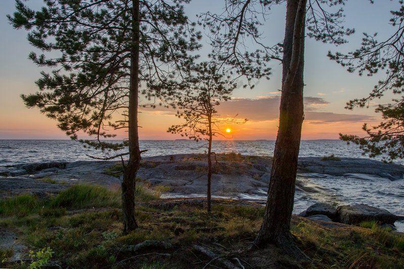 2016, d3100, nikon, вечер, закат, карелия, лето, мыс пери нос, онега, онежское озеро, пейзаж, природа, россия Вечер на озереphoto preview