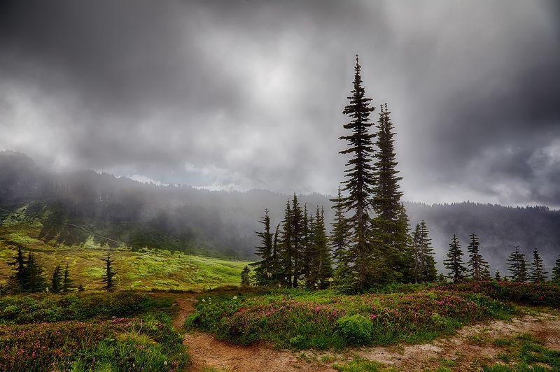 Mount Rainier, Горы, Облака, Солнце ***photo preview