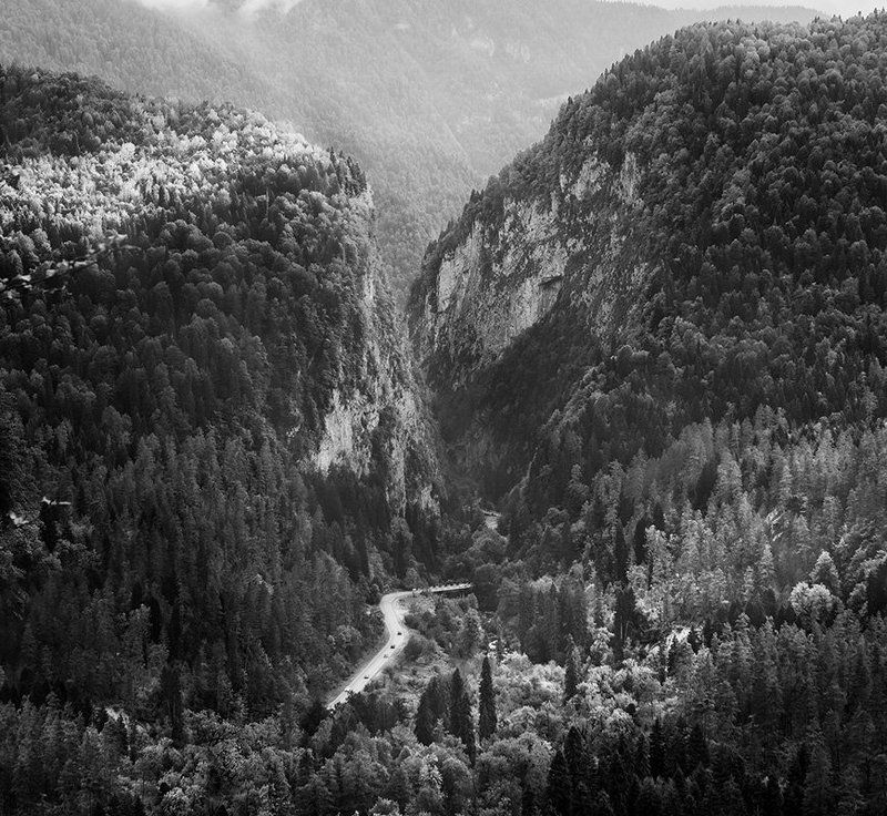 рица, абхазия, природа, парк, горы, дорога, отдых, лес Рицинский реликтовый национальный паркphoto preview