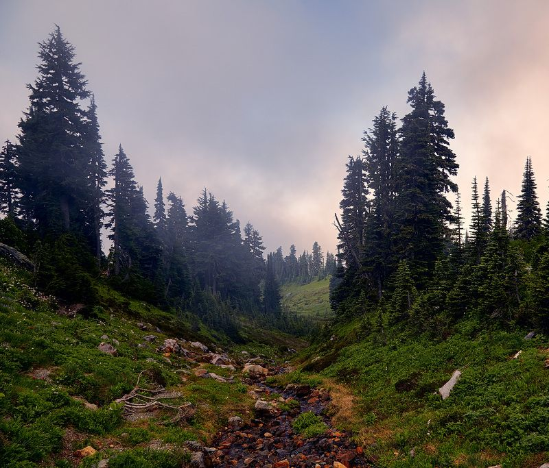 Горы, Туман, Утро Про тишинуphoto preview