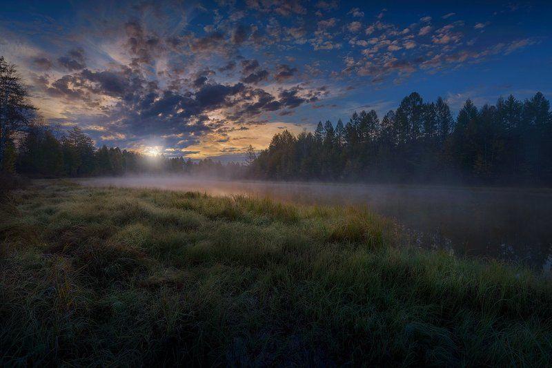 тайга, озеро, рассвет, трава, лес, деревья, облака, небо, туман far far awayphoto preview