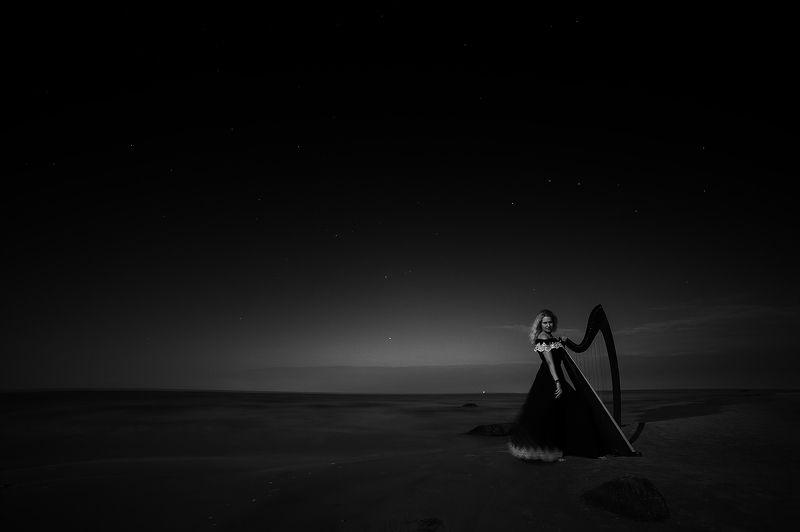 Black and white, Landscape, Long exposure, Night, Portrait Night soundsphoto preview