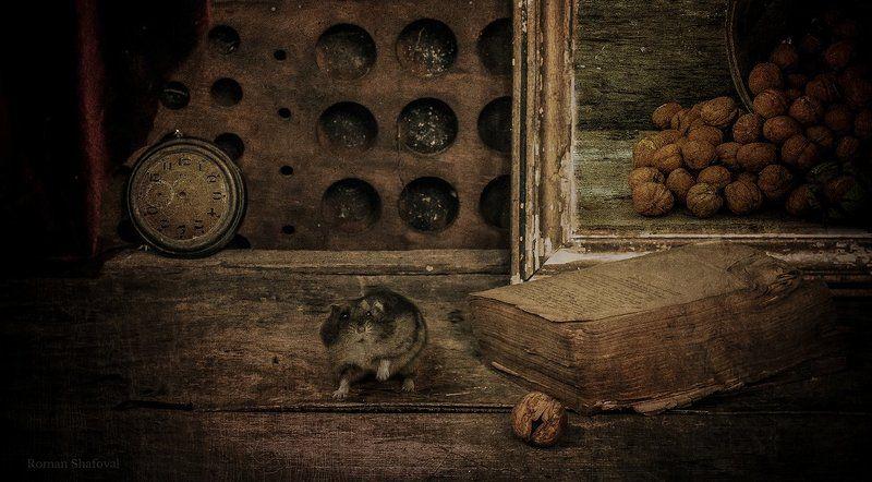 Книга, Натюрморт, Орехи, Роман Шафовал, Хомяк, Часы мечты сбываются....photo preview