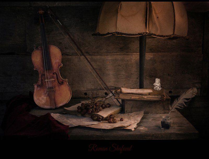 Still life, Виноград, Книга, Лампа, Натюрморт, Роман Шафовал, Скрипка поэзия воздуха....photo preview