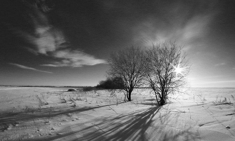 Зима, Снег, Чб 10.12photo preview