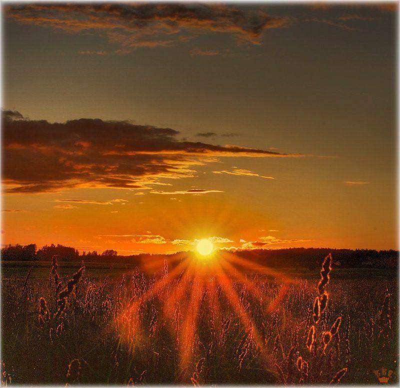 закат, солнце, vvs ***photo preview