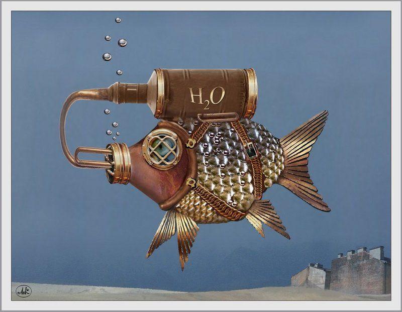 рыбы, вода, море, акваланг Печальная рыбкаphoto preview