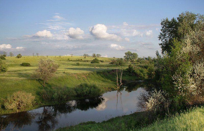 Там, где тихо плещет речка...photo preview