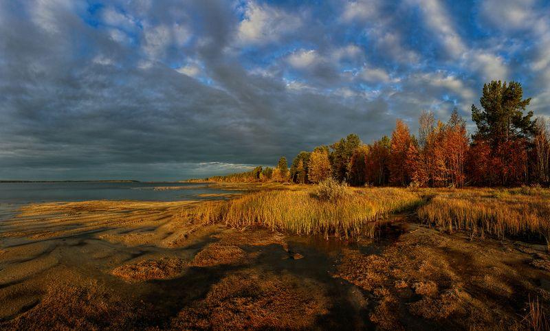 Желтый, Озеро, Озеро Арантур, Осень, Рассвет Осень на Кондинских озерахphoto preview