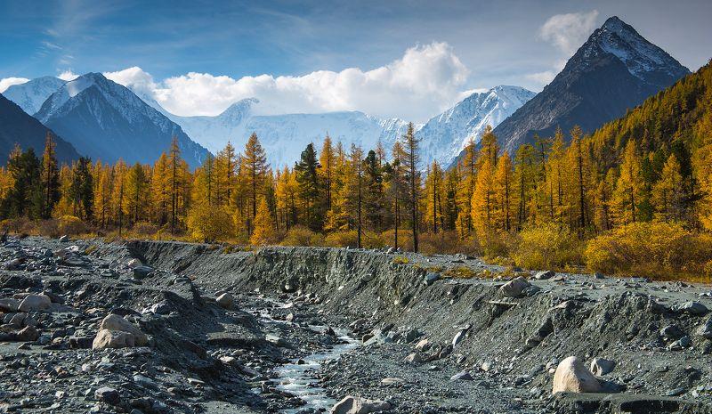 2016, Алтай, Белуха, Гора, Горы, Лиственница, Осень, Поход, Река ***photo preview