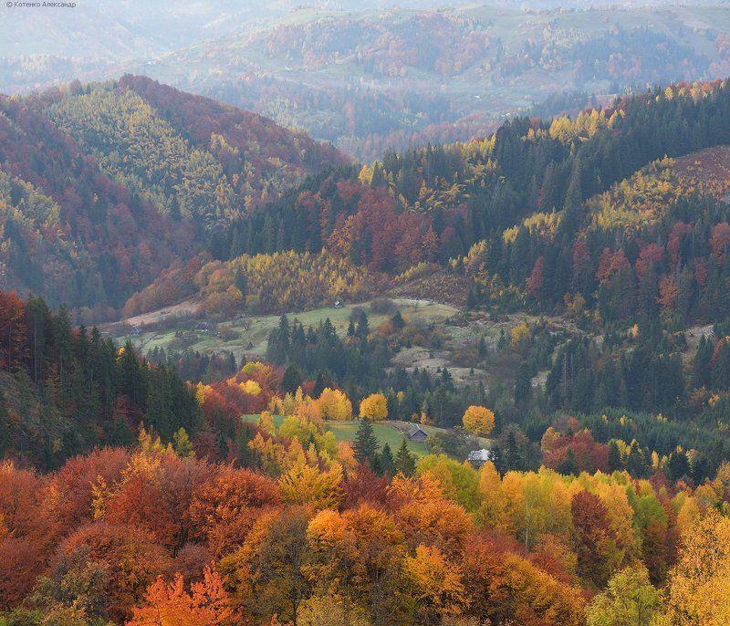 Горы, Карпаты, Осень ***photo preview