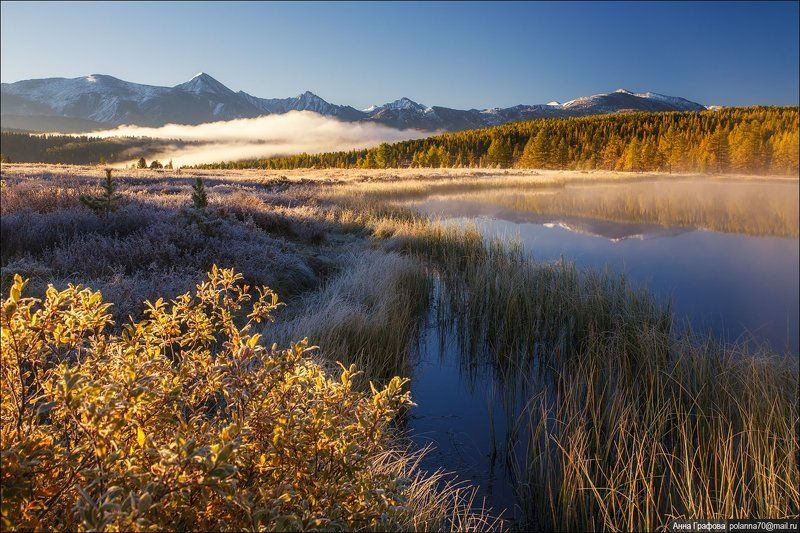 алтай, аня графова, горный алтай, горы, киделю, осень, улаганский перевал Золото морозного утра.photo preview