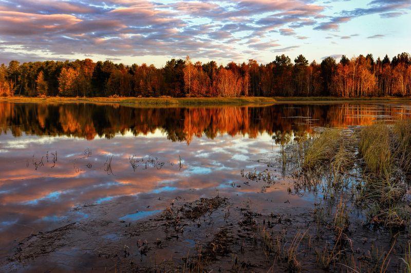 Небо, Осень, Отражения, Рассвет Осенние отраженияphoto preview