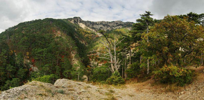крым, горы, боткинская тропа Боткинская тропаphoto preview