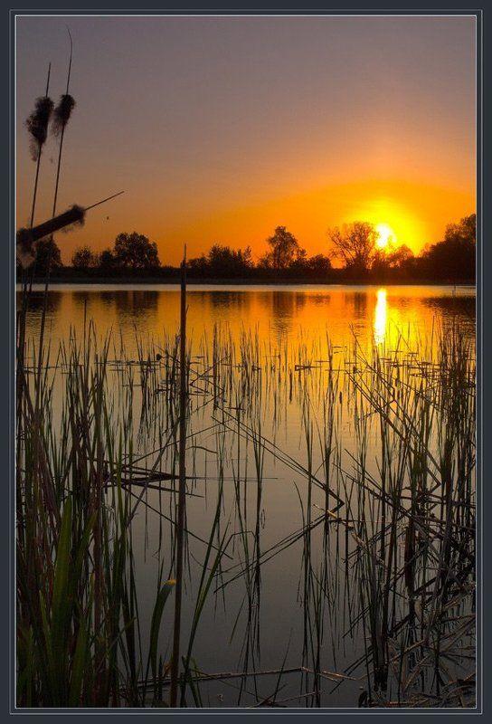 Утро на озереphoto preview