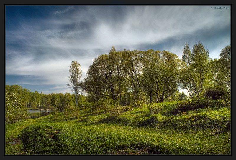 весна, солнце, молодая зелень, красивое небо Весенняя, солнечнаяphoto preview