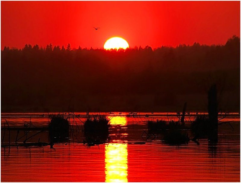 закат,небо,солнце,пейзаж,удмуртия,пруд Успеть до заката...photo preview