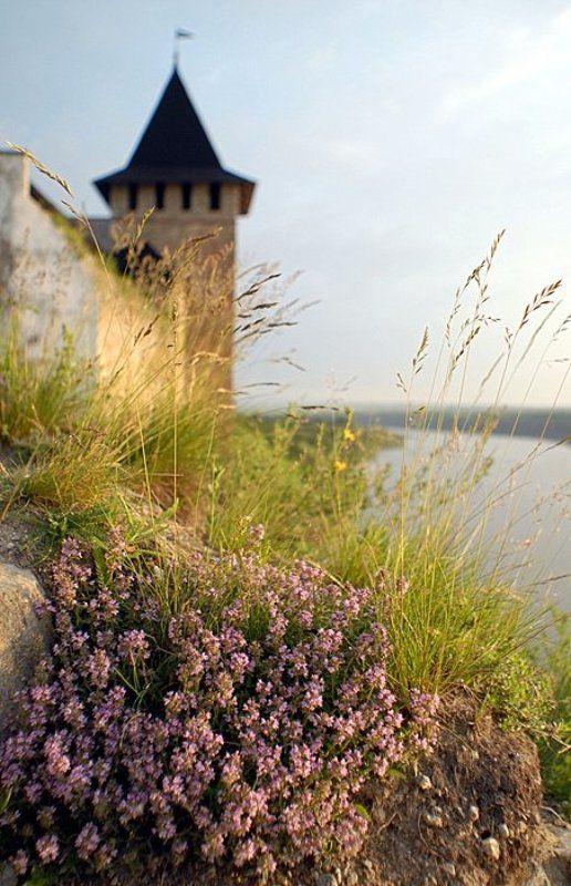 крепость, утро, ***photo preview