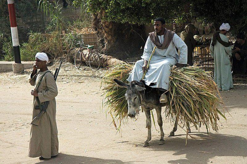 египет,люди,автомат,жизнь,урожай,охрана,микус Египет.жизнь без ретуши.photo preview