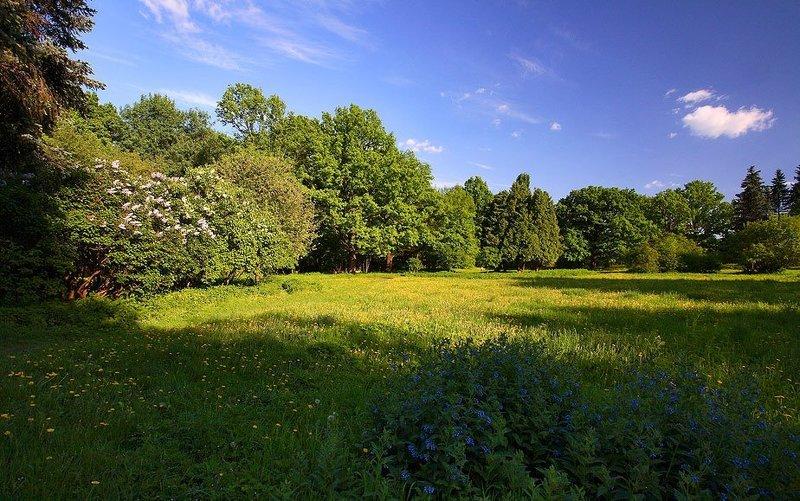 ботанический, сад ***photo preview