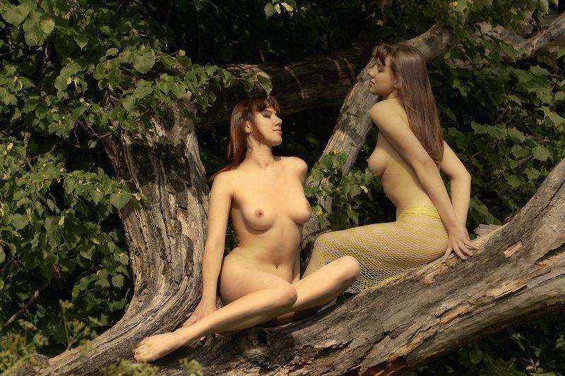 лес,лето,девушка,ню,дерево,жара,разговор,микус Лесные сказкиphoto preview