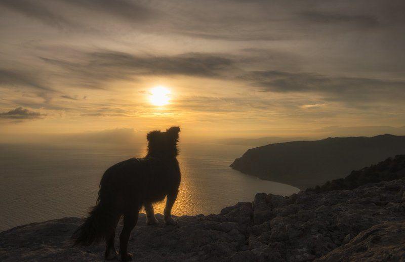 крым, море, горы, свет, закат, рассвет, природа, осень На краю землиphoto preview