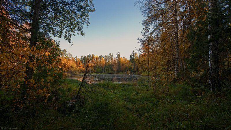 Осенний сон...photo preview