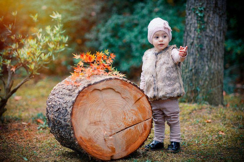Осень photo preview