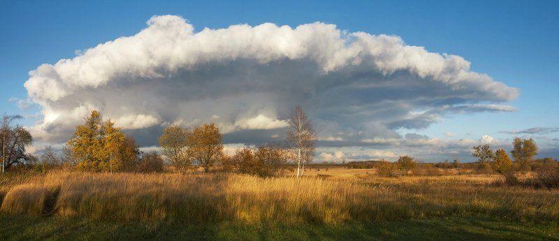 осень, облако, поле, деревья, трава Осенний пейзаж из дачной калитки.photo preview