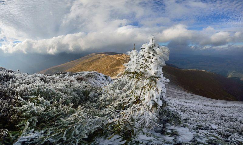 горы, карпати, карпаты, боржава, пилипець Межсезоньеphoto preview