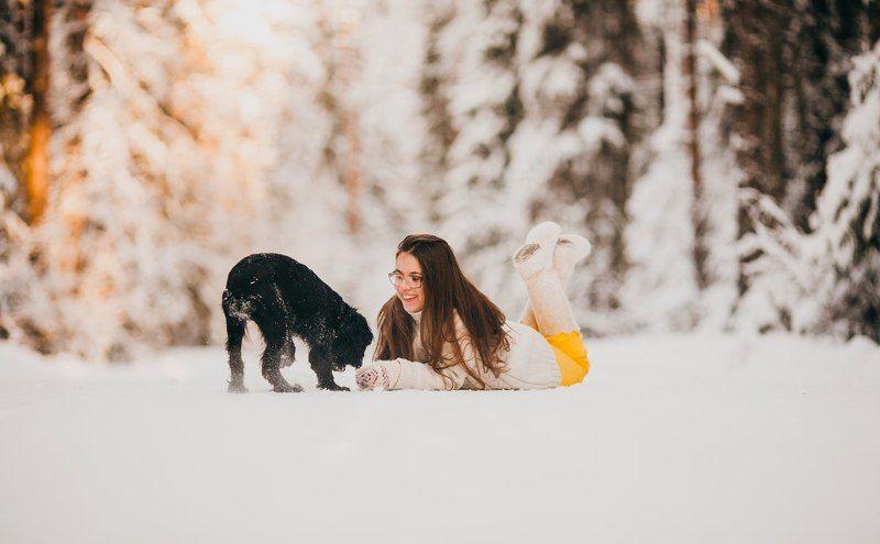 Зима, Лес, Снег, Собака Первый день зимыphoto preview