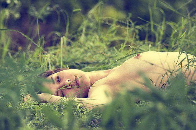 лето,природа,трава,жара,сон,нега,девушка,альфред,микус засыпая в летеphoto preview