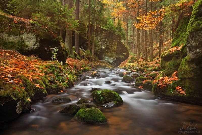 Czech republic, North Bohemia, Bohemia, Czech, Bohemian Switzerland, Elbe Sandstone Mountains, Elbe Sandstone, Sandstone, Kirnitzsch, Kyjov, valley, travel, Europe, nature, mist, fog, forest, tree, trees, mountains, autumn, stream, fall,  river, little ri Small river in autumn colorsphoto preview
