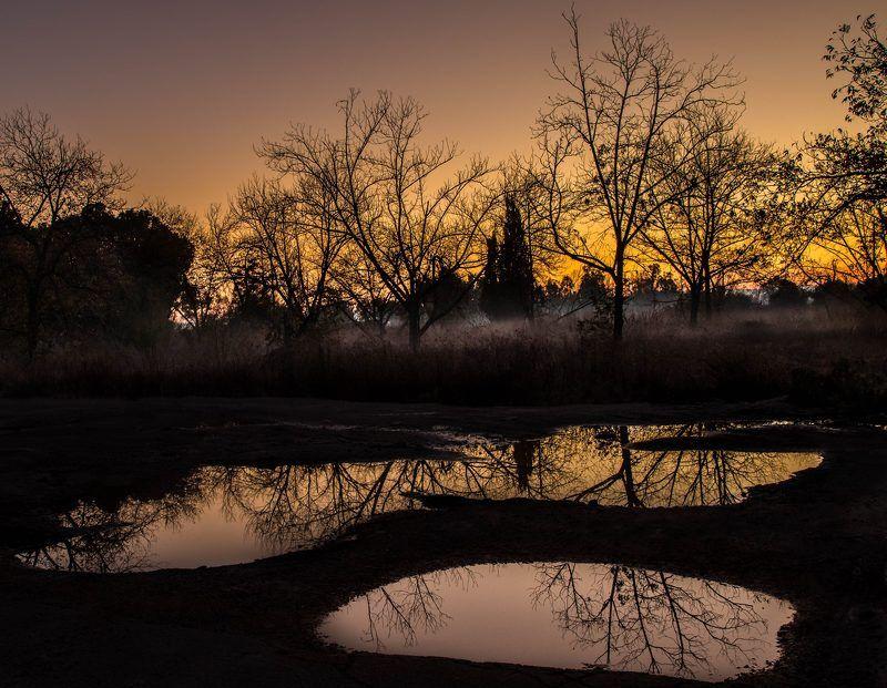 пейзаж, природа,утро,дождь Утро после дождяphoto preview