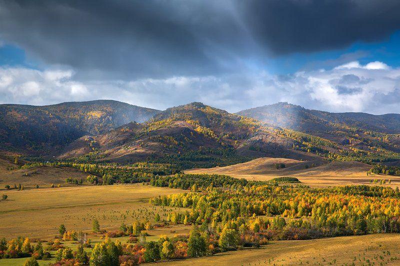 Грибной дождик... Южный Урал.photo preview