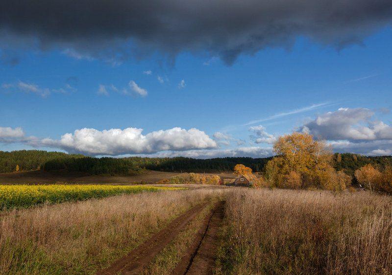 Поле трава колея цветы избушка склоны лес небо туча Темные силыphoto preview