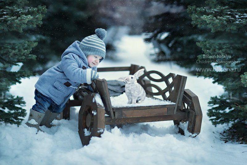 снег , зима, кролик, заяц, мороз, Россия Маленькое чудо! photo preview
