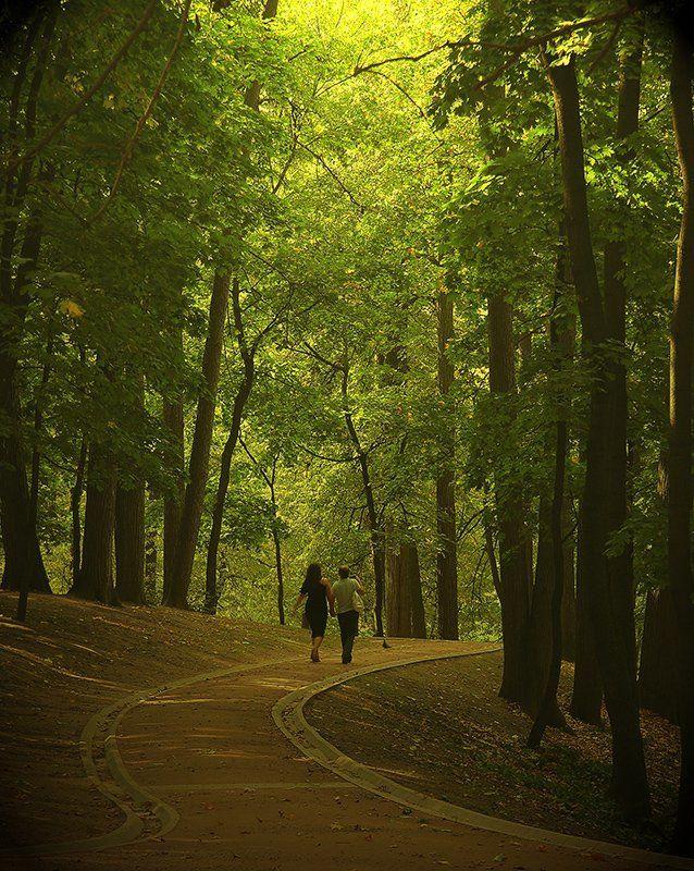 парк., лето., человек. Прогулка в паркеphoto preview