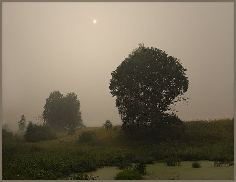 Время дымных пейзажейphoto preview