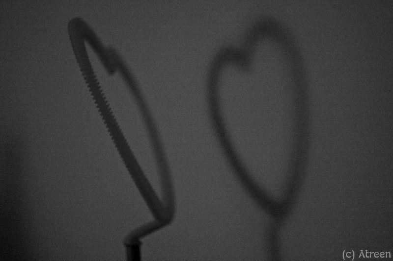 Сердце и теньphoto preview