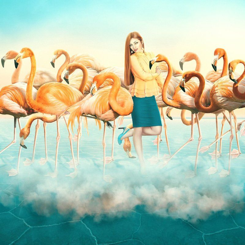 photomanipulations, redflamingo, model, imitation, photo art, flamingo, clouds, creative art   The Imitation gamephoto preview