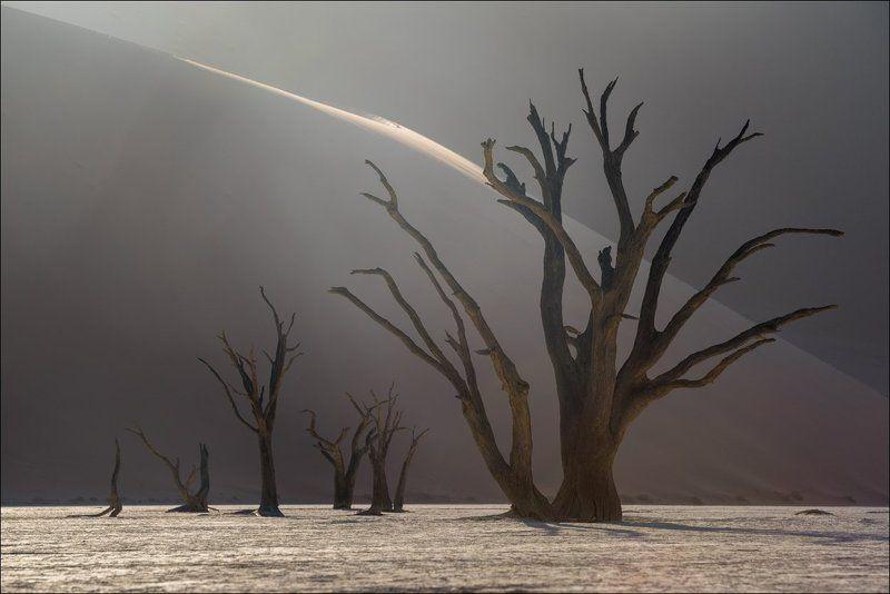 Намибия, Deadvlei Curvesphoto preview