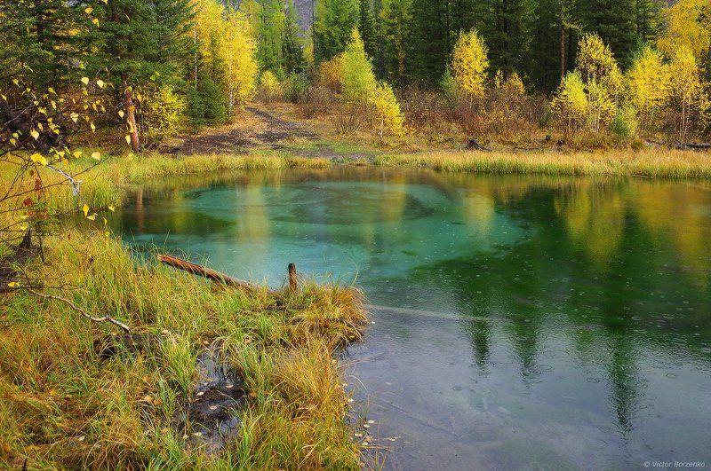 Алтай, Гейзерное озеро, Дождь, Малахитовое озеро, Осень Осенний дождьphoto preview