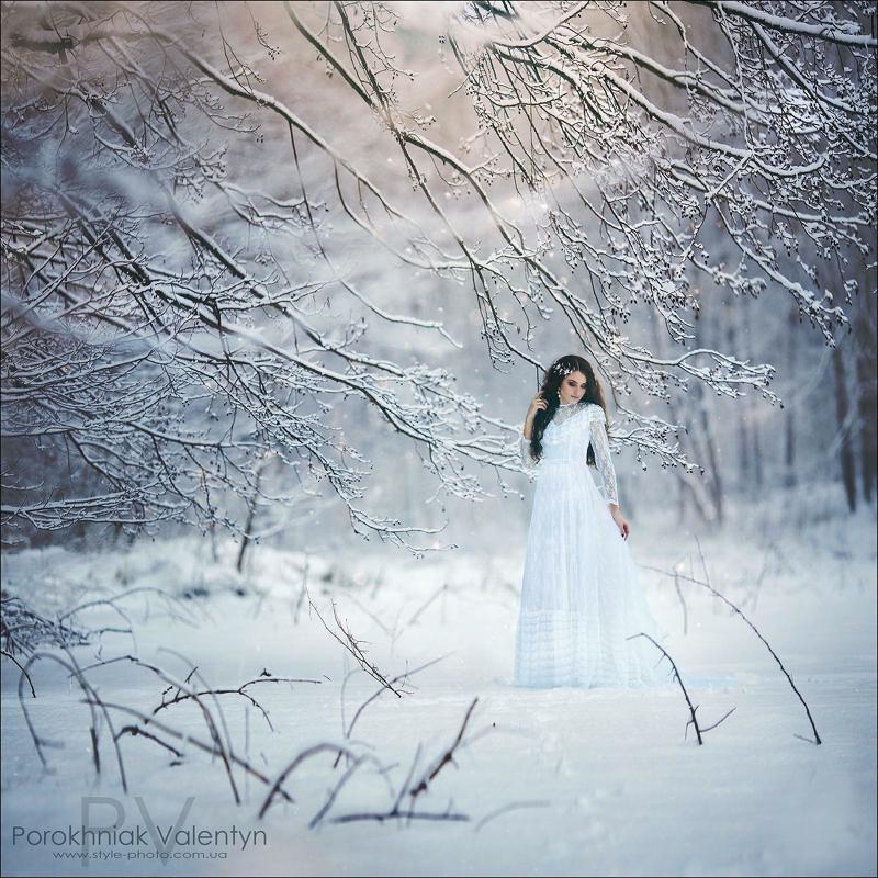 девушка, снег, вснегу, мороз,зима, платье, фотосессия, длинное платье photo preview