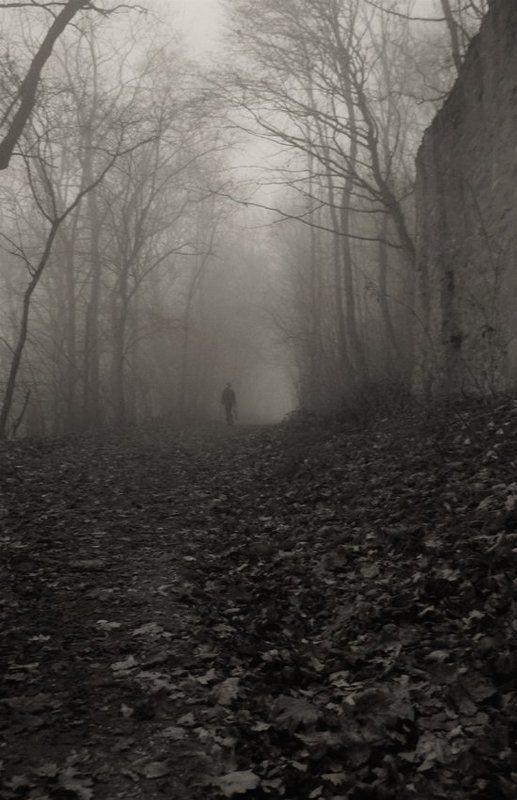 осень,туман Я уйду в туман...photo preview