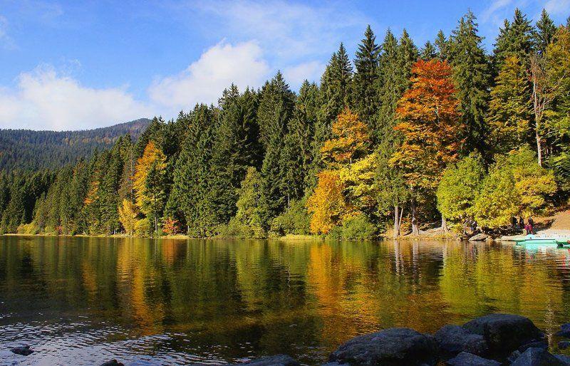 альпы,озеро,осень Запеленало отраженье в прозрачность берега красу...photo preview