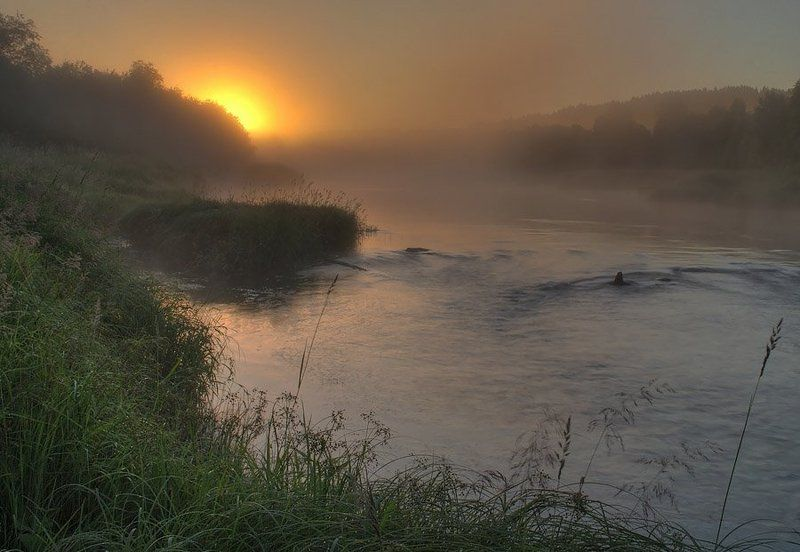 пейзаж, игорь, вишняков, природа, рассвет, никон Туманное утро.photo preview