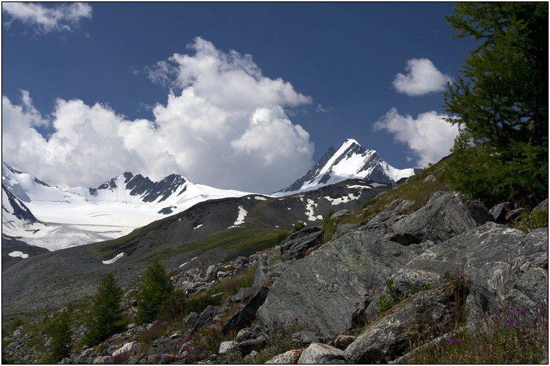 алтай, талдуринский ледник, иикту. В верховьях Талдуры.photo preview