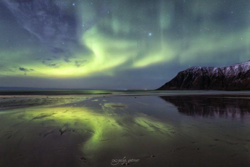 aurora borealis, aurora, night, sea, seascape, landscape, landscapes, northern lights, norway, reflection, light magical lightsphoto preview